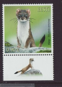 Estonia 2021 MNH - Estonian Fauna,The Stoat - stamp with label