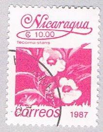 Nicaragua Flower magenta 10 (AP108729)