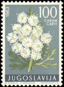 Yugoslavia #689-694, Complete Set(6), 1963, Flowers, Never Hinged
