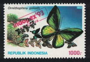Indonesia Goliath birdwing Butterfly 'Ornithoptera goliath' SG#2082