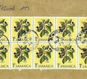 Jamaica *Newport* CDS Cover FLOWERS BLOCK FRANKING {samwells-covers}1978 CS134