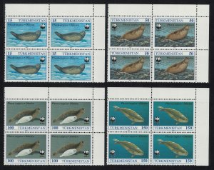 Turkmenistan WWF Caspian Seal 4v Top Right Corner Blocks of 4 SG#32-35 MI#30+