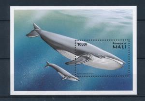 [36656] Mali 1997 Marine life Whale MNH Sheet