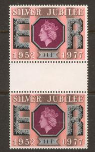 GB QE II  SG 1037 Gutter pair  used no postal frank no gum