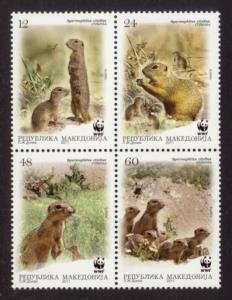 Macedonia Sc# 581 MNH WWF / European Ground Squirrel
