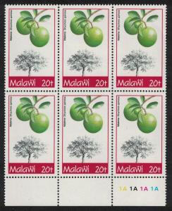 Malawi Natal orange Fruit Tree Strychnos spinosa Block of 6v SG#909 CV£4.2