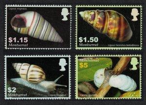 Montserrat Shells Molluscs 4v 2005 MNH SG#1279-1282