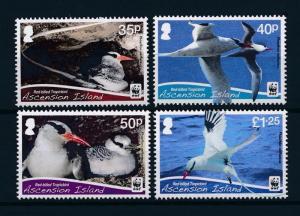 [53645] Ascension 2011 Birds Vögel Oiseaux Ucelli WWF Tropicbird MNH