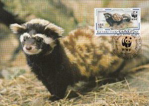 Kazakhstan 1997 Maxicard Sc #172 10te Marbled polecat WWF