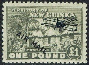 NEW GUINEA 1931 HUT AIRMAIL 1 POUND