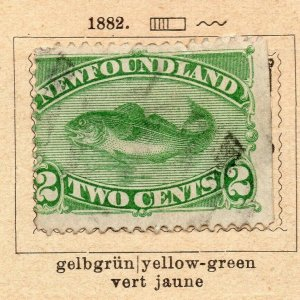 Newfoundland 1882 Early Issue Fine Used 2c. NW-11919