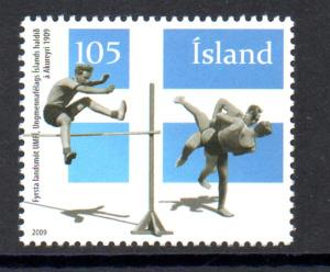 Iceland Sc  1167 2009 Youth Organization stamp mint NH