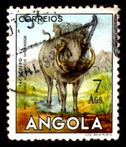 Angola 1953 African Wart Hog Wild Animals 7a Scott.377 Used (#9)