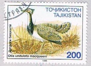Tajikistan Bird 200 - pickastamp (AP109409)
