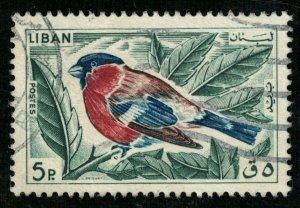 Bird (T-5153)