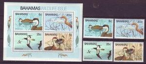 Z719 JLstamps 1981 bahamas set mh + s/s mnh #492-5a birds