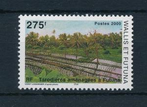 [24094] Wallis & Futuna 2000 Taro Cultivation MNH
