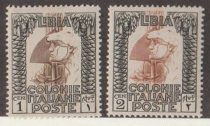Libya Scott #47-48 Stamp - Mint Set