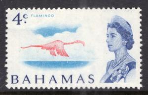 Bahamas 255 Bird MNH VF