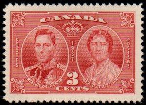 Canada - Scott # 237 VF Mint Never Hinged