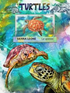SIERRA LEONE - 2017 - Turtles - Perf Souv Sheet - MNH