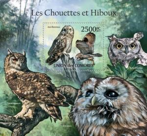COMORES 2011 SHEET OWLS HIBOUX EULEN BUHOS CORUJAS CHOUETTES BIRDS cm11121b
