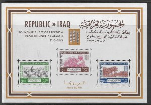 IRAQ, 335A , MNH, S.S OF 3, OF FREEDOM FROM HUNGER