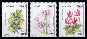 [64956] Algeria 1991 Flora Flowers Blumen Blossom Bluten  MNH