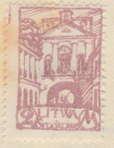 Central Lithuania Mittellitauen Lituanie Lituania 1920 2m MH* A8P11F125