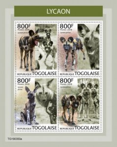 TOGO - 2019 - African Wild Dogs - Perf 4v Sheet - MNH