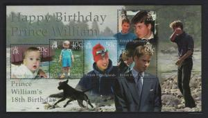 BVI 18th Birthday of Prince William MS SG#MS1046