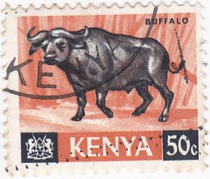 Kenya- 1966 African Buffalo 50c -SG 26