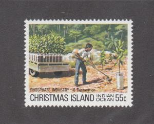 Christmas Island Scott #102 MNH Note