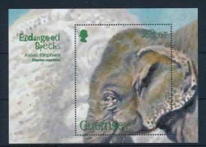 [29721] Guernsey 2010 Animals Endangered species Asian Elephant MNH Sheet