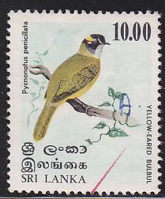 Sri Lanka 569 Used 1979 Yellow-Eared Bulbul