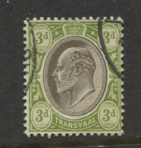 Transvaal #272 Used 1904 Single 3p Stamp