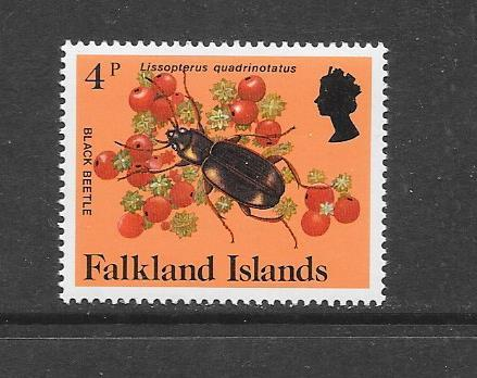 INSECTS - FALKLAND ISLANDS-#390 BLACK BEETLE   MNH