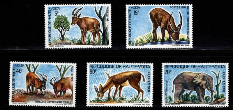 Burkina Faso Upper Volta Scott 577-581 MNH** wildlife set