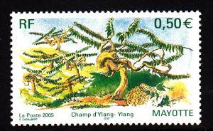 Mayotte MNH Scott #211 50c Ylang ylang trees
