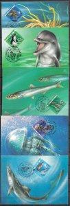 RUSSIA STAMPS 1991 SET OF 5 MAXI CARDS MC MAXIMUM CARDS FAUNA OF THE BLACK SEA
