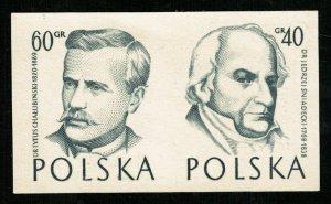 POLSKA (RT-491)