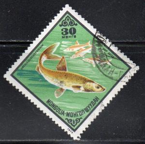 Mongolia 860 - Cto - Altai Osman Fish (cv $0.30)