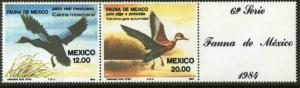 MEXICO 1347a Fauna, ducks, Horizontal Pair with label MINT, NH. VF