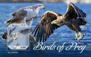 MALDIVES - 2019 - Birds of Prey  - Perf Souv Sheet - MNH
