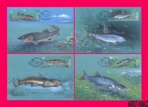 KYRGYZSTAN 2021 Nature Fauna Freshwater River Lake Fish 4 Maxicards Maximum Card