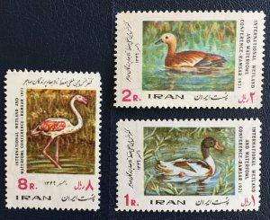 Middle East,worldwide,p,1971  MNH** ,wetlands &waterfowl Preservation,Duck, Bird