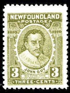 Newfoundland #89 MINT OG SM HR