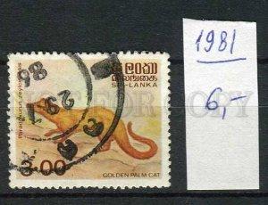 265192 Sri Lanka 1981 stamp Golden Palm cat