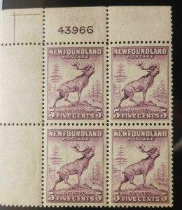 L) 1932 NEWFOUNDLAND, CARIBOU, ANIMAL, PURPLE, 5C, PERFORATED