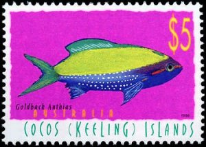 Cocos Islands #327-329, Complete Set(3), 1998, Fish, Never Hinged